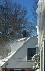 2016-01-24-RZ-Roof_3-Edit.jpg
