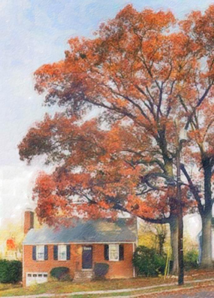 1999-11-20 La Maison et l'abre (Our House and the Oak Tree)