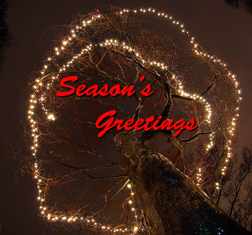 2010-12-12-Christmas-Lights.jpg