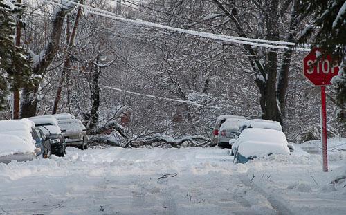 2011-01-27-Heavy-Wet-Snow.jpg