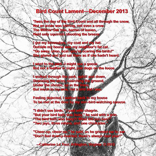 2013-12-14-Catherine-Bird-Count-Poem.jpg