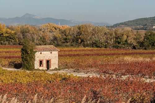 2007-11-02-Provence.jpg