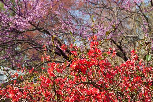 2012-03-19-Spring.jpg