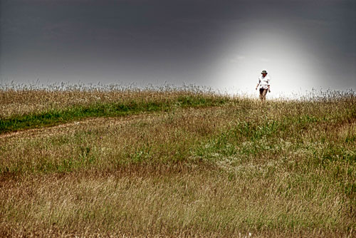 2012-06-12-Manassas-Battlefield-Wanderer.jpg